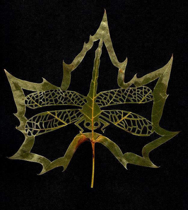 Резные листья с сюжетами. Fall-ing Leaves от LadyTinuz