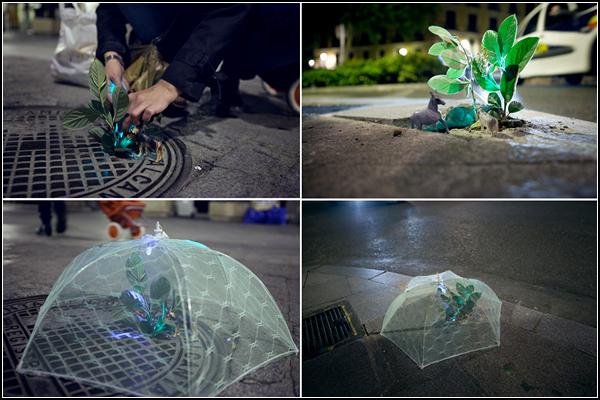 Implanted Nature, инсталляция в защиту мадридской флоры и фауны