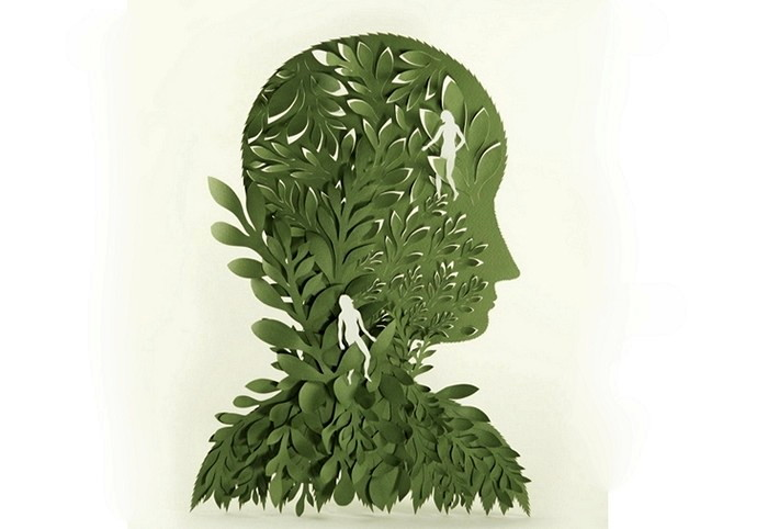 Forest of Fears, бумажный лес, который учит не бояться