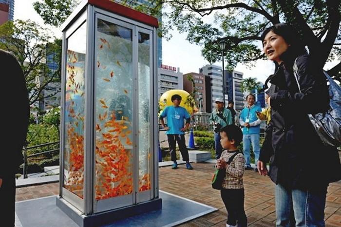 Золотые рыбки в телефонных будках. Арт-проект от Kingyobu