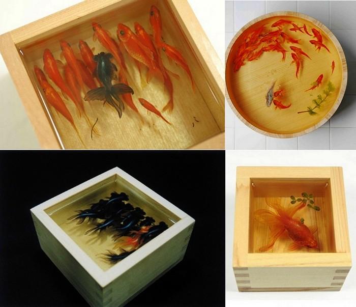Трехмерные рыбки, нарисованные в аквариуме. Арт-проект Goldfish Salvation.