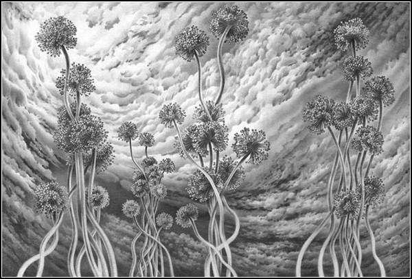 Черно-белые картины, нарисованные простым карандашем. Автор -  Гурам Доленджашвили (Guram Dolenjashvili)