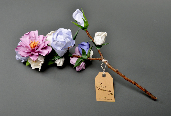 Бумажные цветы и композиции от Frances & Francis
