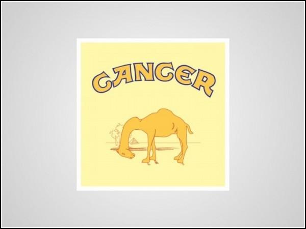 Честные логотипы (Honest Logos) от Виктора Хертца (Victor Hertz)