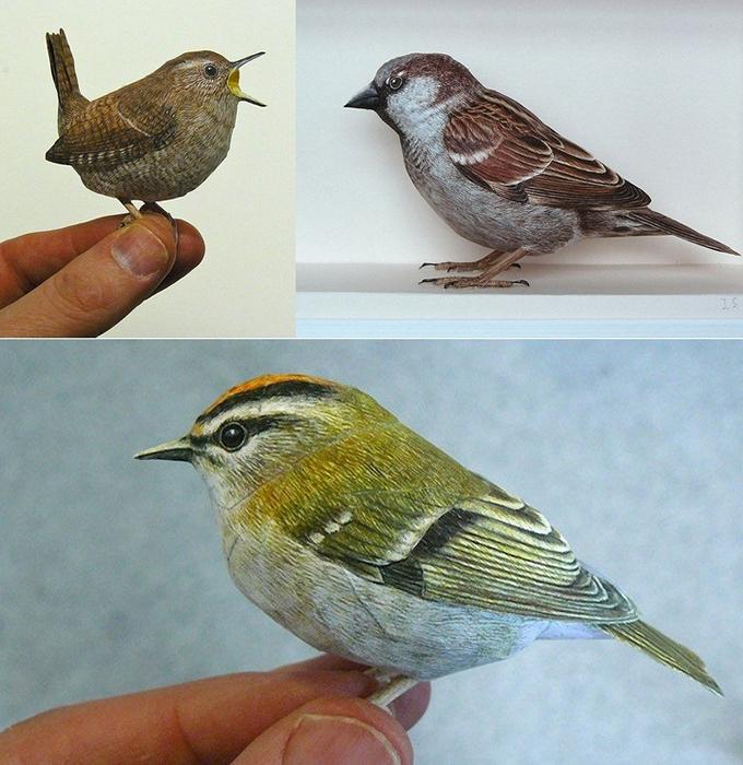 Реалистичные бумажные птицы от Johan Scherft