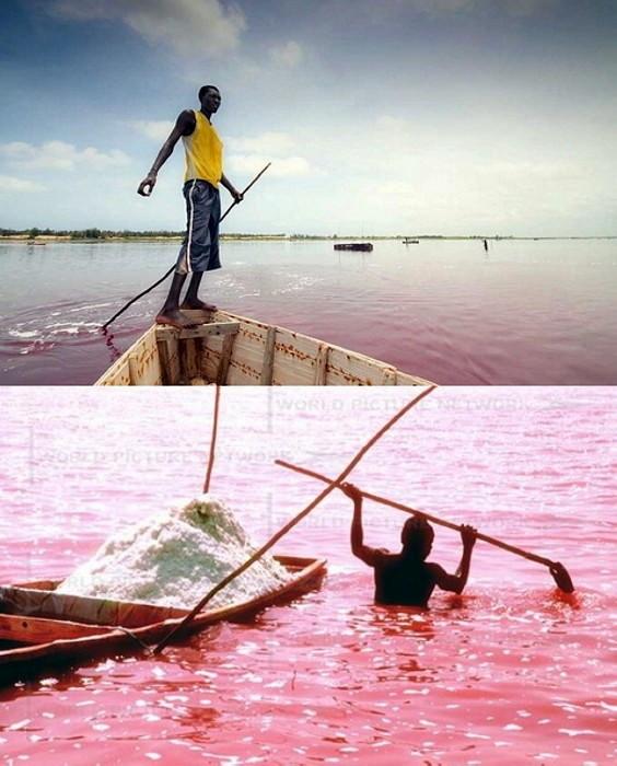 Озеро Ретба (Lac Rose) с розовой водой. Сенегал