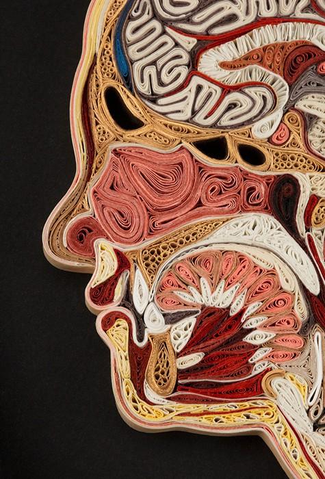 Анатомия из бумаги от Лизы Нильссон (Lisa Nilsson)