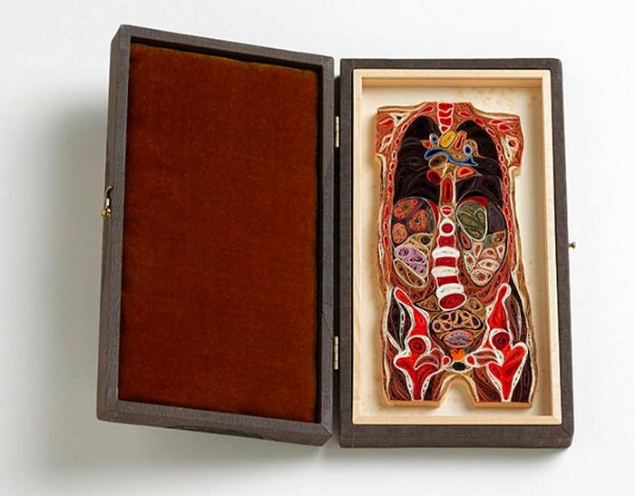 Внутренние органы в разрезе, сделанные из бумажных трубочек. Творчество Лизы Нильссон (Lisa Nilsson)