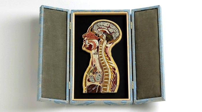 Анатомические скульптуры из бумаги от Лизы Нильссон (Lisa Nilsson)