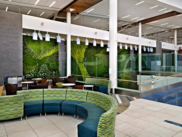 Living Green Wall: зеленая стена в аэропорту Эдмонтона