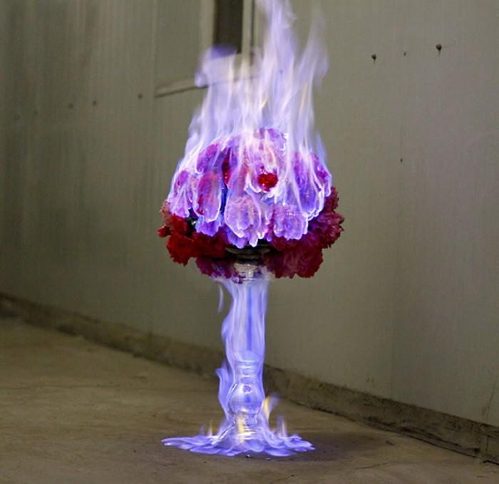 Цветы, объятые пламенем. Серия фотографий Love Letters