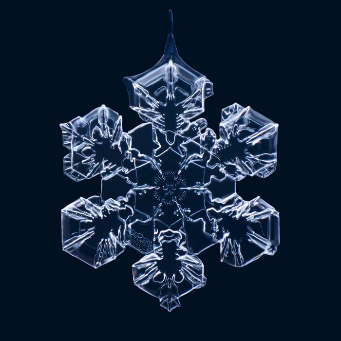 Шедевры, подаренные природой. Макрофотографии снежинок от Маттиаса Ленке