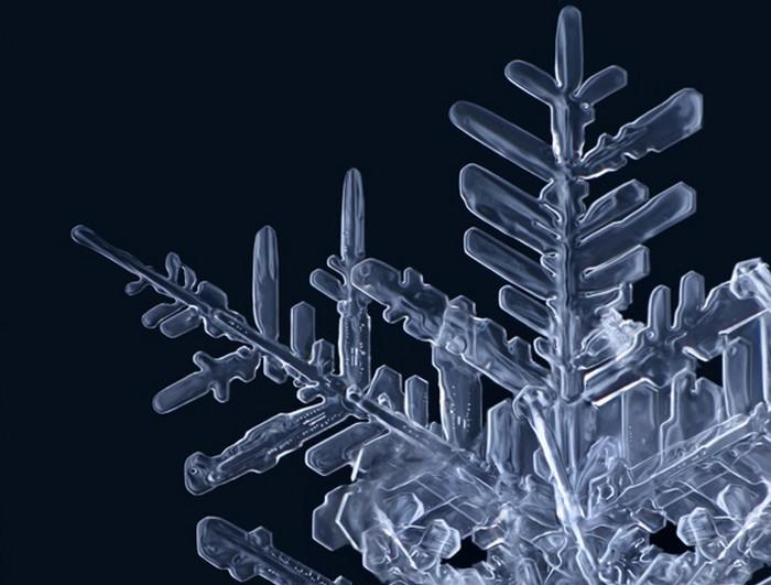 Безупречные снежинки на макрофотографиях Маттиаса Ленке (Matthias Lenke)
