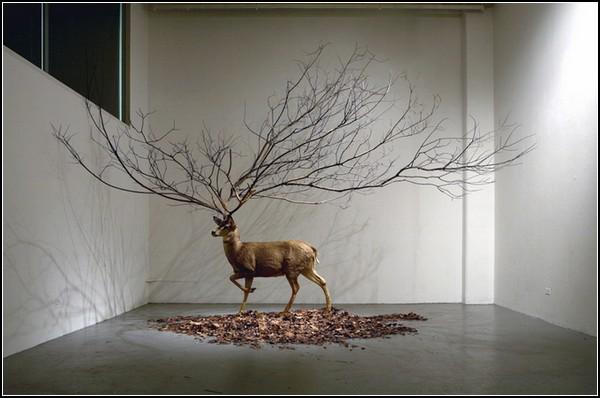 Концептуальные инсталляции Мйонгбеоэм Ким (Myeongbeom Kim)
