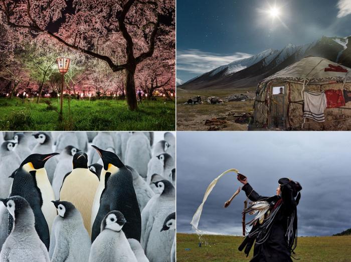 Лучшие фото за 18-24 марта от National Geographic