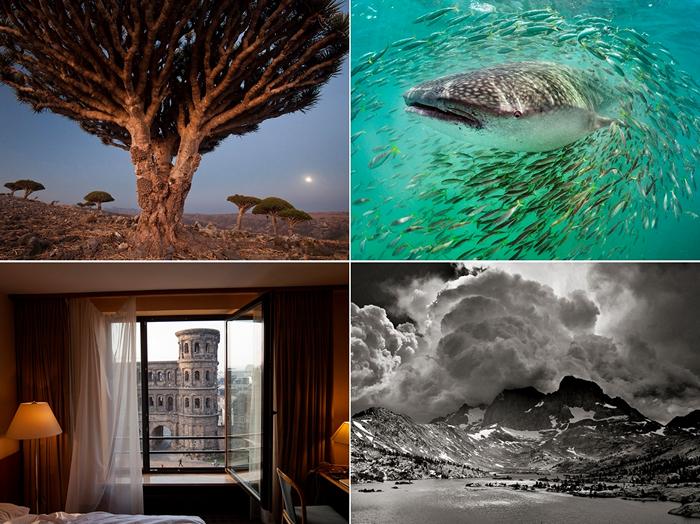 Лучшие фотографии за 08 -14 октября от National Geographic