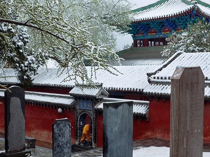 Monk, China