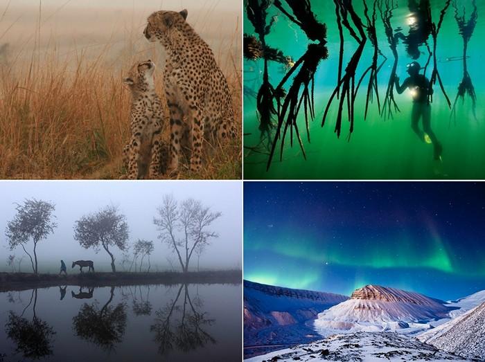 Лучшие фотографии за 17-23 сентября от National Geographic