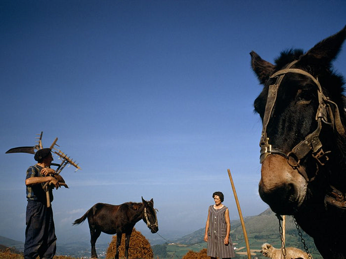 Farmers, Basque Country