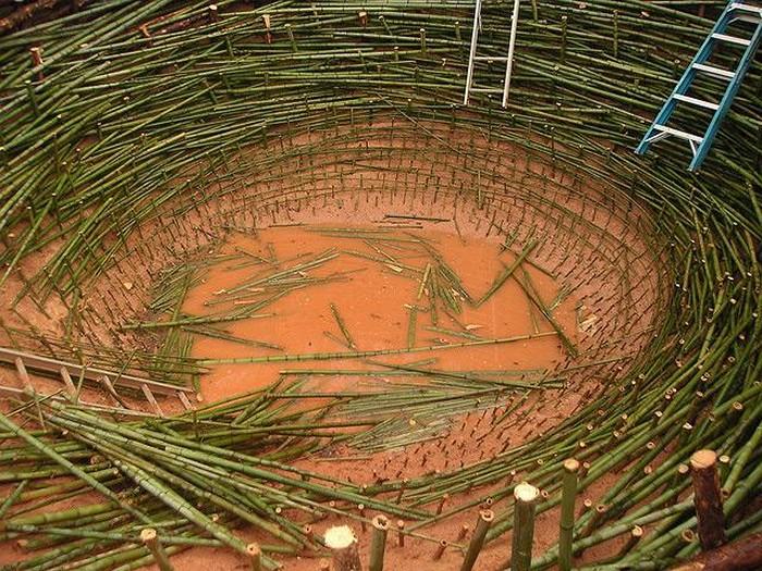 The Nest. Инсталляция Нильса Удо для  университета Клемсон