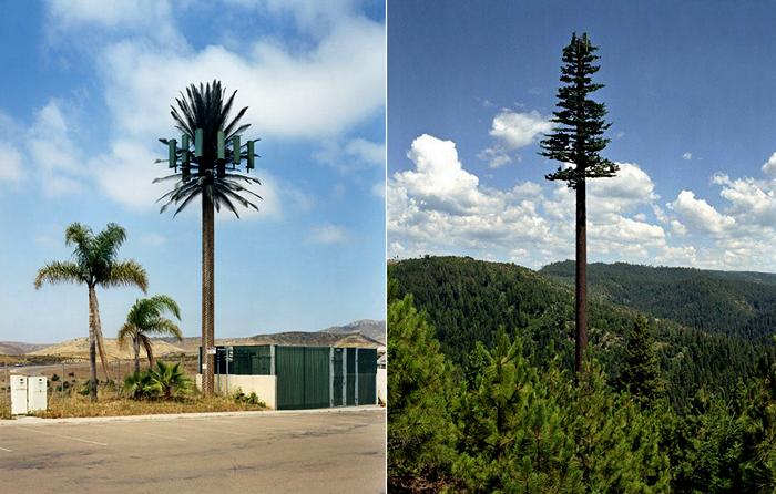 Сотовые вышки в фальшивых деревьях. Серия фотографий New Trees от Robert_Voit