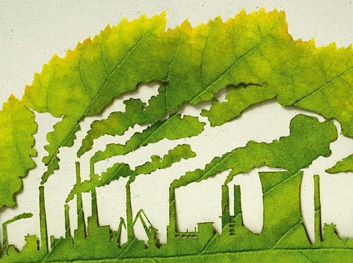 Plant for the Planet, экологический арт-проект в защиту окружающей среды