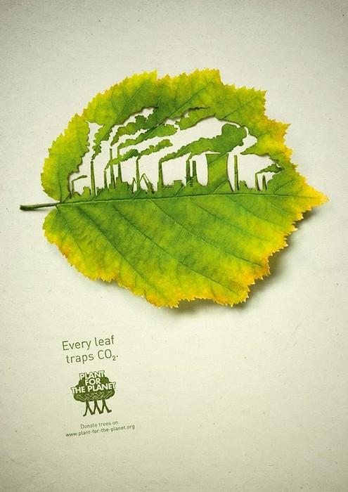 Арт-проект Plant for the Planet, вырезанный на листьях