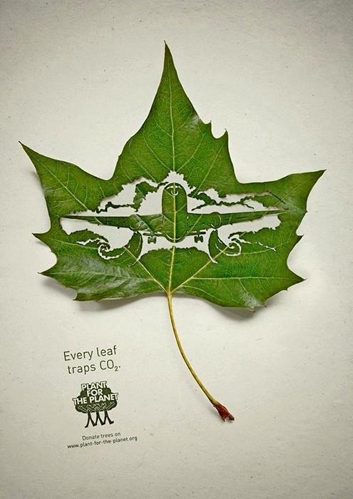 Plant for the Planet, экологический арт-проект из зеленых листьев