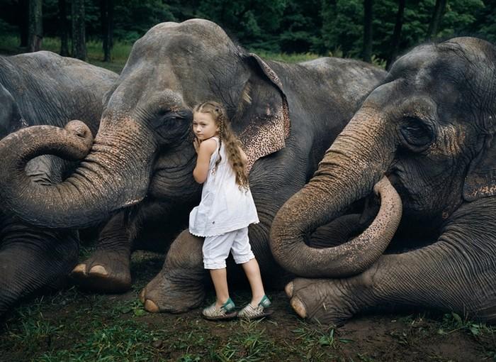 Дочь среди животных, арт-проект Amelia's world от Robin Schwartz