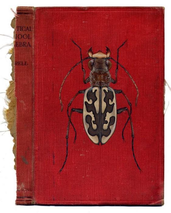 Жучки, нарисованные на книгах