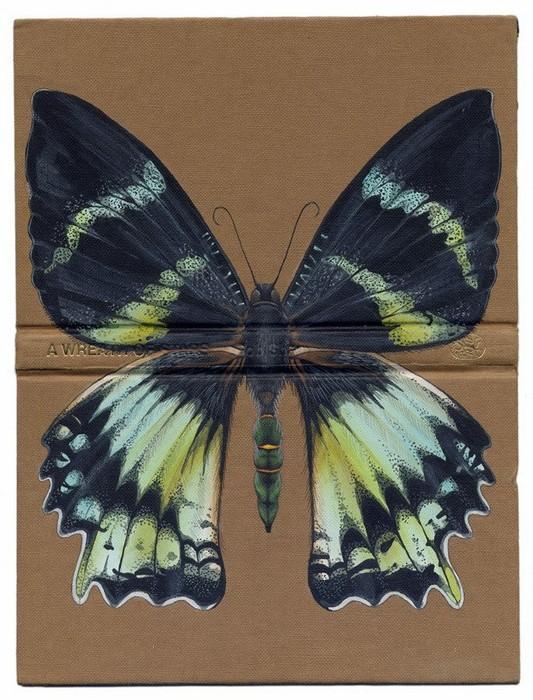Бабочка на книжке, работа Роуз Сандерсон (Rose Sanderson)