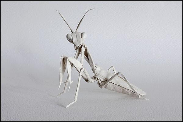 Оригинальное оригами от Сифо Мабоны (Sipho Mabona)