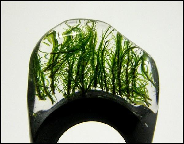 Дизайнерские кольца с живой *начинкой* от Sylwia Calus Design