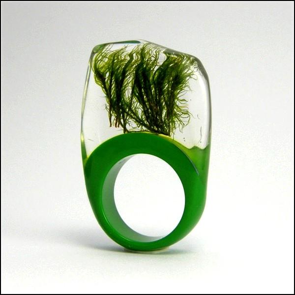 Кольца от Sylwia Calus Design, украшенные частичками природы