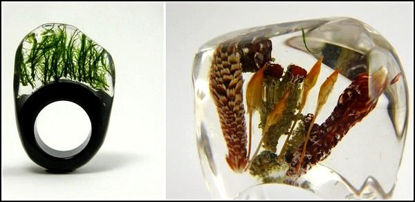 *Живые* кольца от Sylwia Calus Design