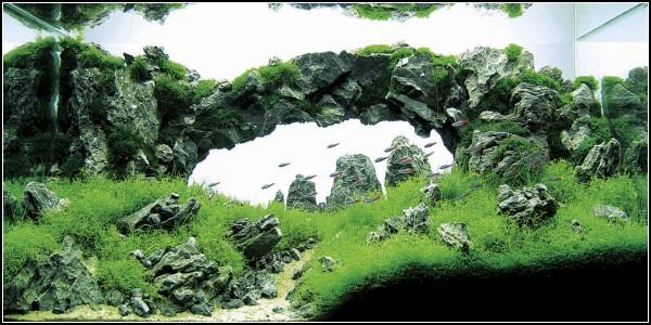 *Каменный мост* из Китая, поразивший самого Такаши Амано