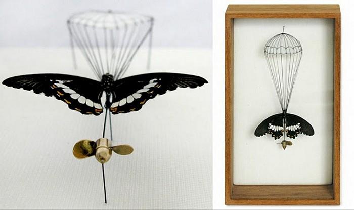 Broken Butterflies, *отремонтированные* бабочки с искусственными крыльями