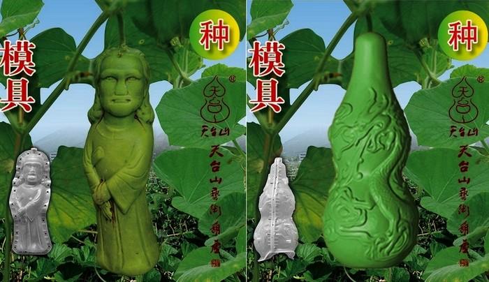 Как вырастить собственного Будду