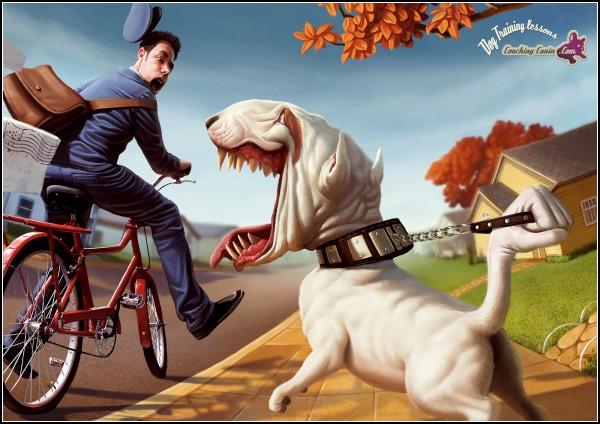 Dog training lessons