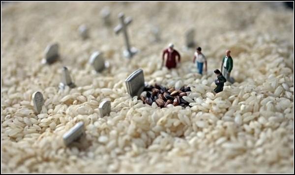Рисовое кладбище для усопших. Лилипуты в мире обычных вещей