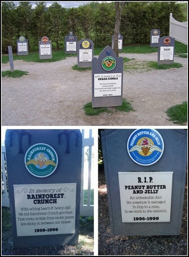 Flavour Graveyard. Кладбище мороженого Ben&Jerry's