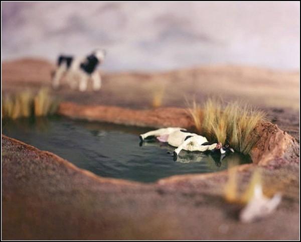 Мор крупного рогатого скота. Диорамы Accidentally Kansas