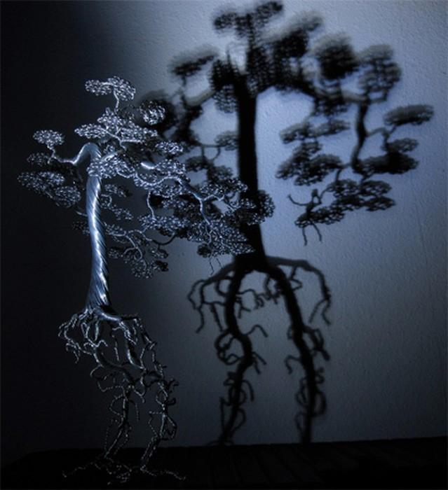Деревья бонсаи своими руками