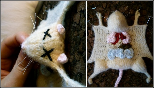 aKNITomy, вязаные препарированные животные от Emily Stoneking
