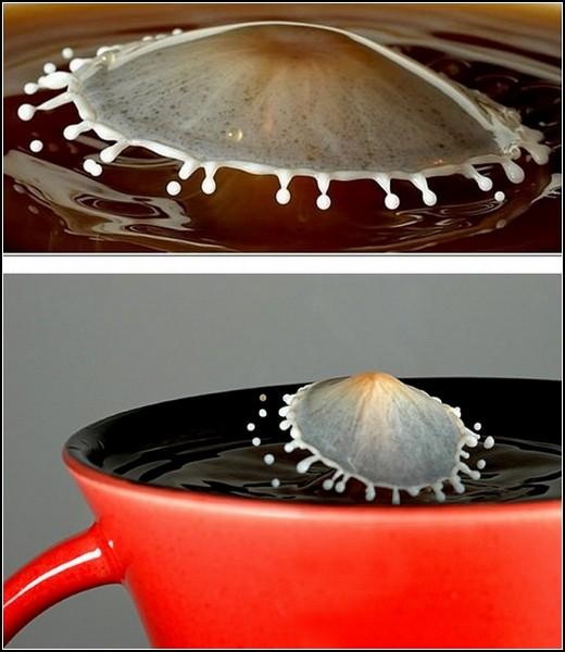 Milk meets Coffee. Высокоскоростная фотосессия молока и кофе