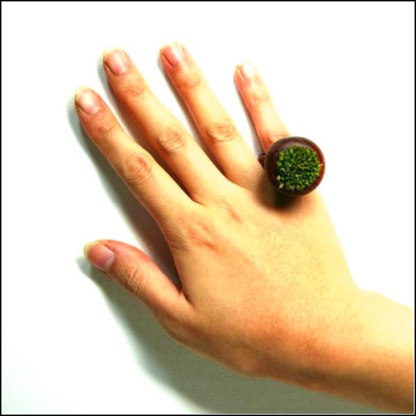 *Моховые колечки* Moss Ring