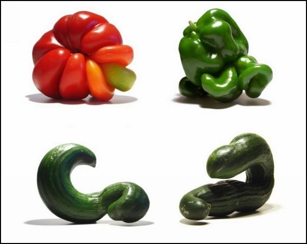 ГМО, радиация, или же природа пошутила?
