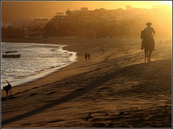Cowboy, Cabo San Lucas