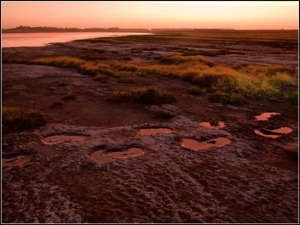 Diprotodon Tracks, Australia
