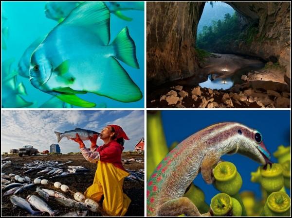 Лучшие фотографии за 07-13 марта от National Geographic
